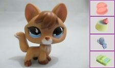 Littlest Pet Shop LPS RARE Fox #673 Tan Brown Blue Eyes+1 FREE Access 100% Auth