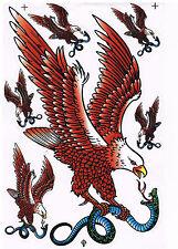 Aufkleber Eagle Adler mit Schlange in den Krallen  : A4 Format