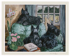 "SCOTTISH TERRIER SCOTTIE DOG ART LIMITED EDITION PRINT - ""Lap of Luxury"""