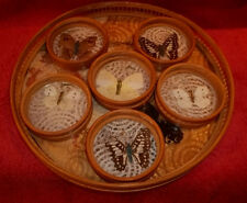 Retro Bamboo Serving Tray With 6 Butterfly Coasters