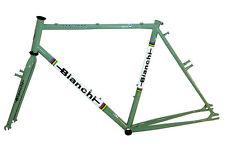 Bianchi San Jose MTB Frameset 58 cm Gang Green