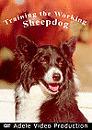 Training the Working Sheep Dog DVD