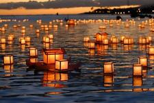 NEW Chinese Water Floating Lantern Birthday,Wishing,Weddings Party