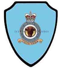 RAF NEATISHEAD WALL SHIELD