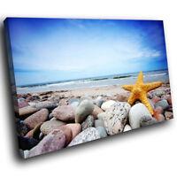 ZAB117 Blue Yellow Starfish Beach Modern Canvas Abstract Wall Art Picture Prints