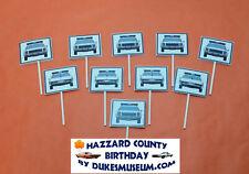 DUKES OF HAZZARD-  HAZZARD COUNTY BIRTHDAY DECORATIONS- SHERIFF CAR PICKS