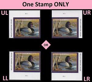 US RW88 Migratory Birds $25 plate single (1 stamp) MNH 2021-2022
