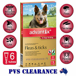 Advantix Red 6 for Large Dogs 10 - 25 kg - 6 Pack - Flea & Tick, Mosquitoes
