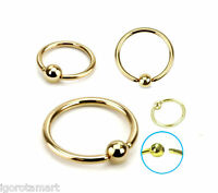Gold titanium captive bead ring hoop earring cartilage tragus helix piercing 14g