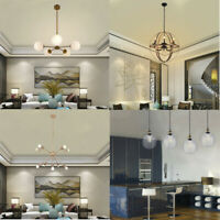 5/6/10 Lights Chandelier Brushed Brass Modern Pendant Lighting Ceiling Lamp US