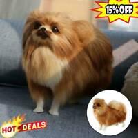 Realistic Pomeranian Simulation Dog Toy Plush Toy Stuffed Animal Gifts