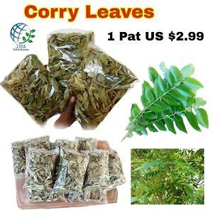 1 Pat Curry Leaves Organic Premium Herb A Grade Quality ( Karuveppilai )