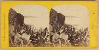Italia Lac Isola Maggiore Madre Ca 1865 Foto Braun Stereo Vintage Albumina