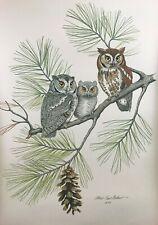 Great Orig. 1977 signed Albert Earl Gilbert The Screech Owl Amer. Audubon Print