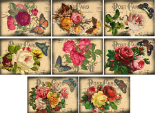 Vintage inspired roses postcard butterfly stationery set of 8 with envelopes