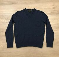 Banana Republic Mens Large 100 Merino Extra Fine Wool V Neck Blue Sweater