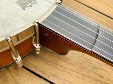 Banjo Prucha Fretless openback neuwertig