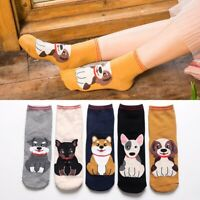 Women Men Cotton Striped Socks Hosiery Funny Dog Cat Print Casual Sports Socks
