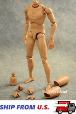1/6 Scale Narrow Shoulder Male Figure Body For Hot Toys TTM18 TTM19 TTM21 USA