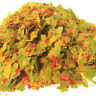 Small Flake, Tropical Fish Flakes by Zeigler, Bulk Tropical Fish Food
