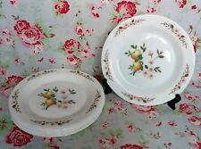 6/24 Assiettes Dessert Arcopal Décor Pomme Fleur Pommiers Vaisselle Ancienne ELF