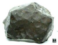 NWA 13309 LL3.15 Primitive Chondrite Meteorite Rare, Type 3 Meteorite 1928 Gram