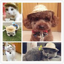 Hot Pet Cat Puppy Dog Hawaii Hat Custom Funny Straw Hat For Dog Cat Ear Pet Gift