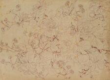 Botanische Impression blühender Buschrosen, Mitte 19. Jhd, Zeichnung