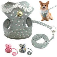 Mesh Padded Dog Harness and Leads Pet Puppy Leash Vest & Bell Chihuahua 4 Sizes