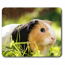 Computer Mouse Mat - Tri-Colour Guinea Pig Animals Cute Pets Office Gift #8268