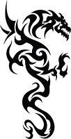 Dragon Tribal Dragons Car Decal Window Sticker TRB008