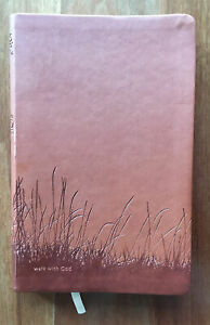The One Year Walk with God Devotional  book faux leather cover Chris Tiegreen