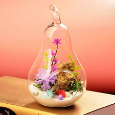 Flower Plant Hanging Clear Glass Vase Bottle Pot Wedding Garden Pear Decor