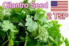 Cilantro Seeds NON-GMO Fresh Garden Seeds Coriander Parsley 2 TSP Home garden US