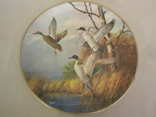 PINTAIL DUCK collector plate DAVID MAASS Takeoff RARE Brown & Bigelow