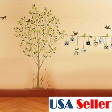 Tree Photo Frame Bird Removable Vinyl Art Wall Sticker Decal Home Decor
