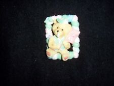 Teddy With Pink Flag-Blue Vest & Blue White Cap in a Frame Frige Magnet  EUC