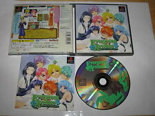 Evergreen Avenue Playstation PS1 Japan import US Seller