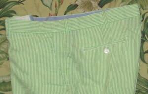 """Polo Golf RALPH LAUREN Green 10"""" Seersucker Shorts 36"""