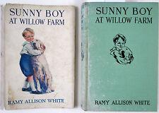 1929 SUNNY BOY AT WILLOW FARM 1st Ed w DJ by Ramy Allison White - John M. Foster