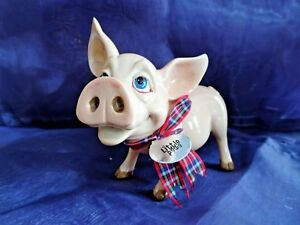 Ornamental Pig - Pet with Personality
