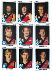 1981 Scanlens ESSENDON Team Set (14 Cards)