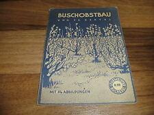 Fritz Hertel -- BUSCHOBSTBAU // Lehrmeister Bücherei 224 von ca 1950