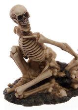 Neu+Totenkopf+Skull+Skelett+Halloween+Flaschenhalter+Gothic+Weinflaschenhalter+