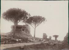 Italie, Rome, Via Appia Antica  Vintage albumen print. Italy. Italia. Roma.  T