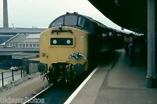 British Rail 37176/37177 Welsh Warrior Railtour 1979 Rail Photo E