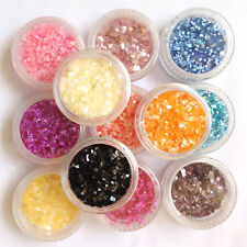 12Mix Color Crushed Shell for False Acrylic UV Gel Tip Nail Art Decoration Set