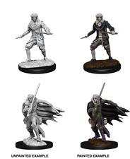 WizKids Pathfinder Deep Cuts™ - Elf Male Rogue miniatura da dipingere