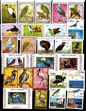 TOUS PAYS  differentes espèces d'oiseaux:exotiques,sédentaires,migratreurG 254