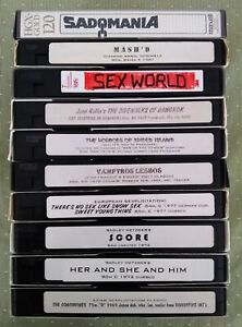 Used VHS T-120s Lot of 10 Sold As Blank Various Brands (Maxell, TDK...)